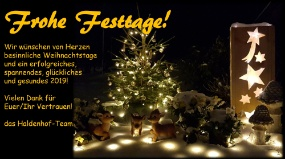 Frohe Festtage 2019